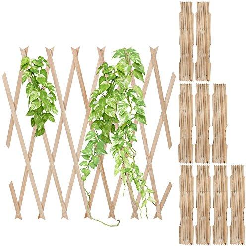 Pflanzengitter f r den garten oder balkon for Garten balkon