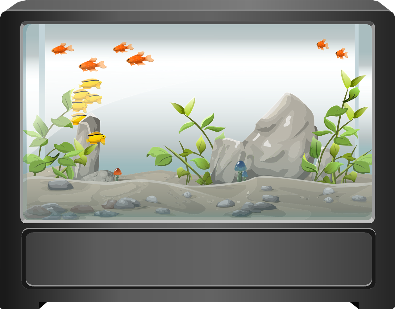 umzug mit aquarium so berstehen auch deine fische den. Black Bedroom Furniture Sets. Home Design Ideas